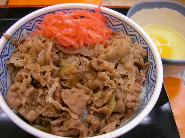 I could live off of donburi, a rice bowl topped with seasoned meat. So delicious and so affordable!
